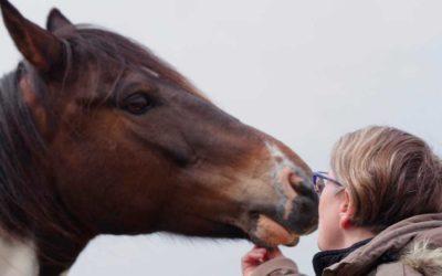 Juillet 2019 : S'inspirer du cheval pour prendre les bonnes décisions
