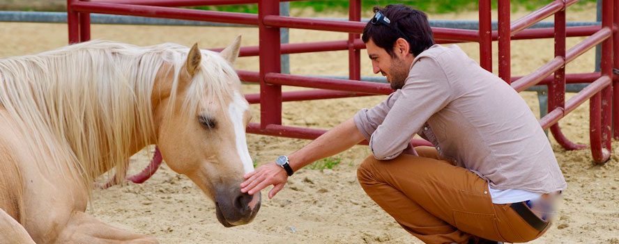 30.10. – 03.11.2019 *Le cheval, guérisseur de l'homme